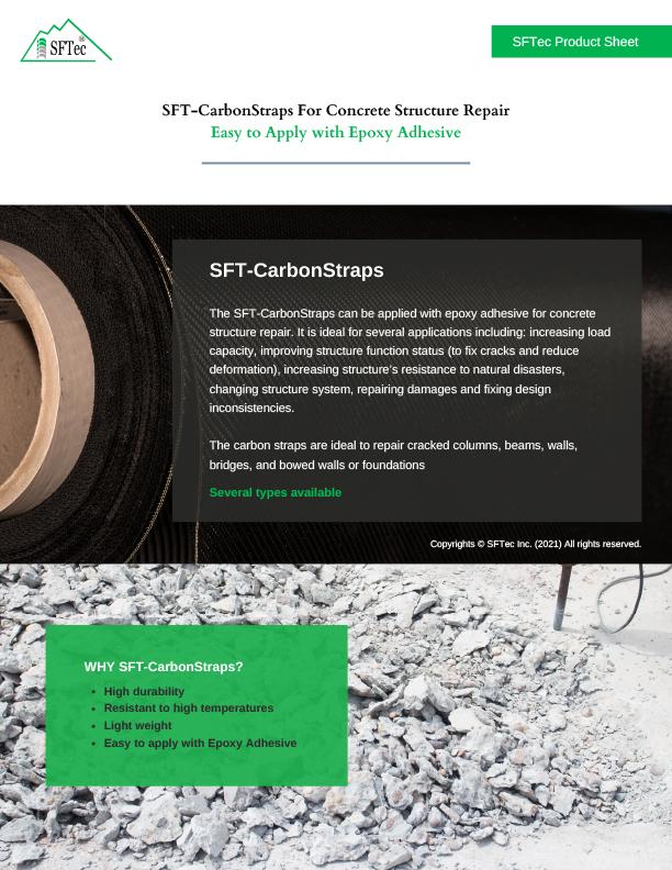 ProductSheet_EN_SFTCarbonStraps